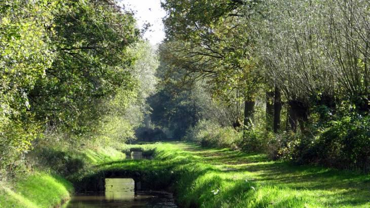 Lekker landschap – Noten en Zaden 6 Oktober
