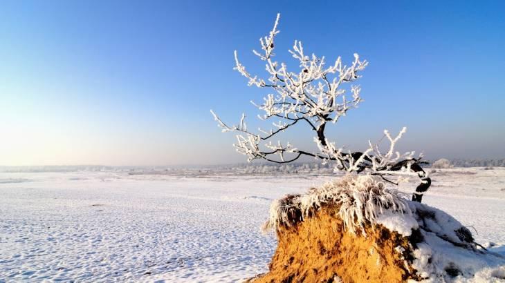 Winterwandeling op Zaterdag 4 januari
