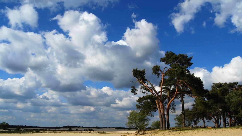 Dag van het Nationaal Park 2014