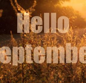 Aanbieding camping maand September en/of Oktober